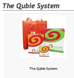 June Giveaway: The Complete Qubie Pro Coupon Organizer System! **ends 6/30**