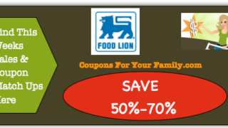 Food Lion Stock Up and Save