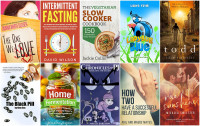 Books to Download for Free July 27:  Rae of Sunshine, Ladybug Blue, The One We Love, Home Fermentation & more