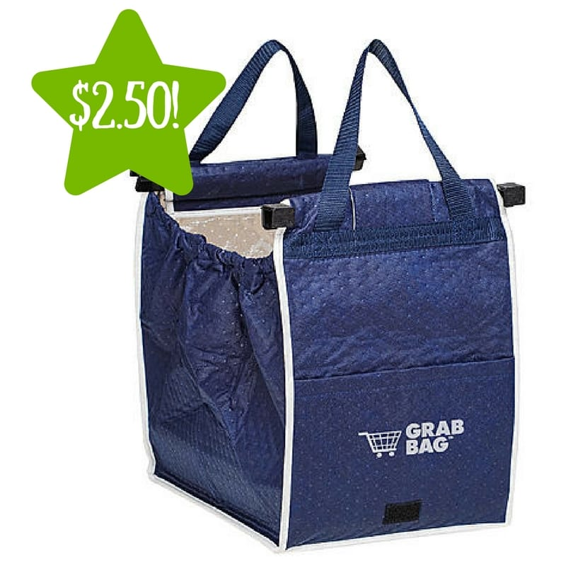 Kmart As Seen On Tv Insulated Grab Bag Only 2 50 Reg 10