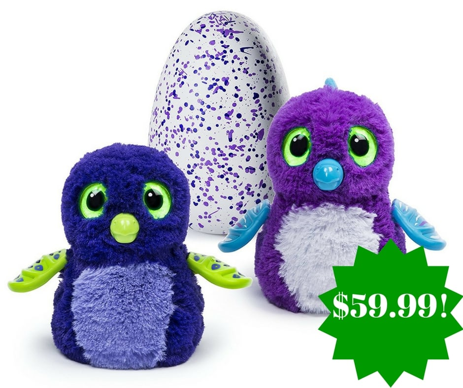Amazon: Hatchimals Purple/Blue Draggle Only $59.99