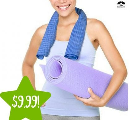 Sears: Two Elephants XL Cooling Gym Towel Only $9.99 (Reg. $20)