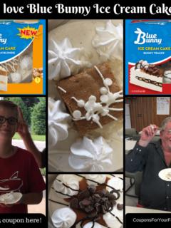 Blue Bunny Ice Cream Cake-