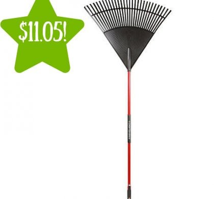 Sears: Craftsman 30″ Poly Leaf Rake Only $11.05 After Points