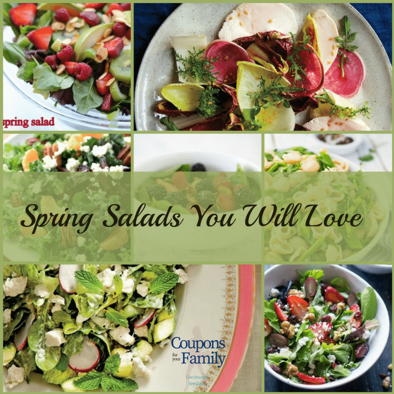 Spring Salad Recipe Roundup