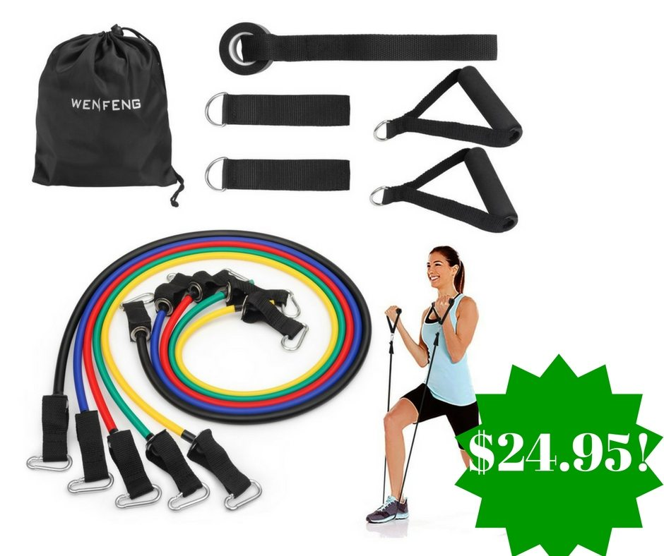 Amazon: WENFENG Resistance Band Set Only $24.95 (Reg. $100)