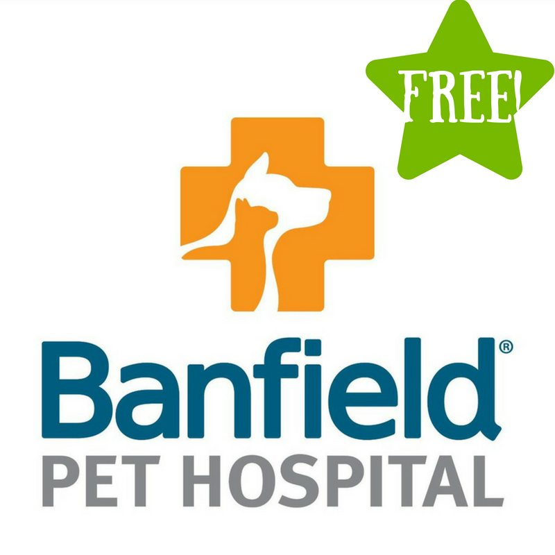 FREE Office Visit & Consultation at Banfield Pet Hospital