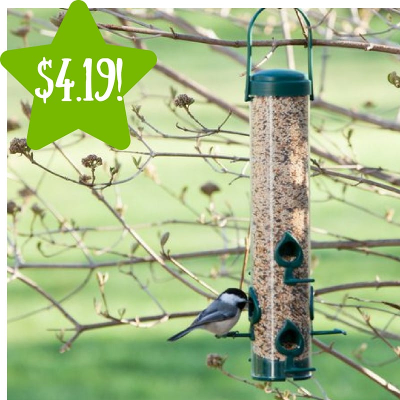 Walmart: Perky-Pet Classic Wild Bird Feeder Only $4.19 (Reg. $9.26)