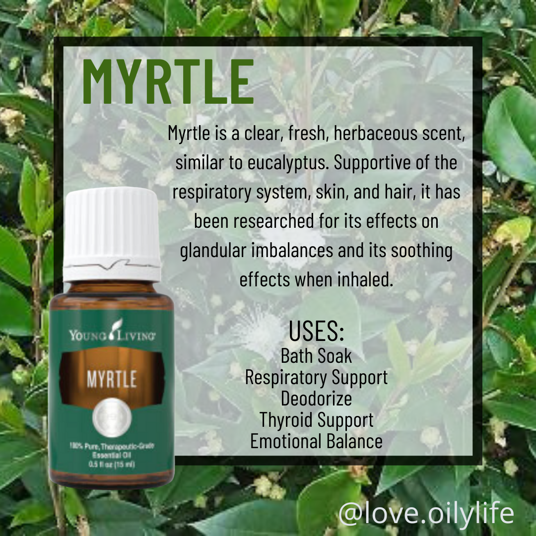 Myrtle Essential Oil Uses