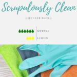 Scrupulously Clean Facebook